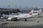 空が大好き!さんが、関西国際空港で撮影した日本航空 787-8 Dreamlinerの航空フォト(写真)