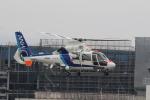 ショウさんが、広島へリポートで撮影したオールニッポンヘリコプター AS365N2 Dauphin 2の航空フォト(写真)