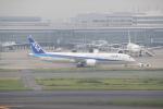 keitsamさんが、羽田空港で撮影した全日空 787-9の航空フォト(写真)