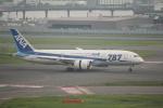 keitsamさんが、羽田空港で撮影した全日空 787-8 Dreamlinerの航空フォト(写真)