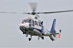 ヘリオスさんが、東京ヘリポートで撮影したオールニッポンヘリコプター AS365N2 Dauphin 2の航空フォト(写真)
