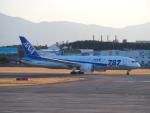 鷹71さんが、松山空港で撮影した全日空 787-8 Dreamlinerの航空フォト(写真)