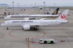 きんめいさんが、中部国際空港で撮影した日本航空 787-8 Dreamlinerの航空フォト(写真)