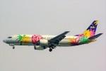 ちっとろむさんが、羽田空港で撮影したスカイネットアジア航空 737-43Qの航空フォト(写真)