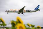 BENKIMAN-ENLさんが、成田国際空港で撮影した全日空 777-381/ERの航空フォト(写真)