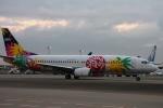 Hiro-hiroさんが、羽田空港で撮影したスカイネットアジア航空 737-4M0の航空フォト(写真)