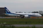 ショウさんが、成田国際空港で撮影した全日空 787-8 Dreamlinerの航空フォト(写真)
