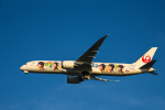 we love kixさんが、関西国際空港で撮影した日本航空 787-9の航空フォト(写真)