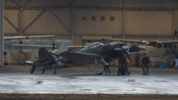 YaoRJOYさんが、八尾空港で撮影したゼロエンタープライズ Zero 22/A6M3の航空フォト(飛行機 写真・画像)