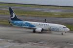 ショウさんが、中部国際空港で撮影した山東航空 737-85Nの航空フォト(写真)