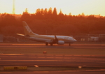 ふじいあきらさんが、成田国際空港で撮影した全日空 737-781の航空フォト(飛行機 写真・画像)