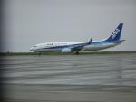 ヒコーキグモさんが、徳島空港で撮影した全日空 737-8ALの航空フォト(写真)