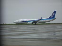 ヒコーキグモさんが、徳島空港で撮影した全日空 737-8ALの航空フォト(飛行機 写真・画像)