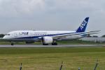 JA56SSさんが、伊丹空港で撮影した全日空 787-8 Dreamlinerの航空フォト(写真)