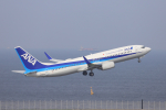 jjieさんが、羽田空港で撮影した全日空 737-881の航空フォト(写真)