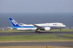 jjieさんが、羽田空港で撮影した全日空 787-8 Dreamlinerの航空フォト(写真)