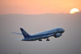 SKY☆MOTOさんが、成田国際空港で撮影した全日空 787-8 Dreamlinerの航空フォト(飛行機 写真・画像)