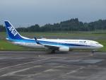 FT51ANさんが、鹿児島空港で撮影した全日空 737-8ALの航空フォト(写真)
