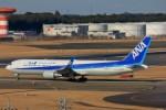 ちっとろむさんが、成田国際空港で撮影した全日空 767-381/ERの航空フォト(写真)