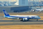 ちっとろむさんが、羽田空港で撮影した全日空 787-8 Dreamlinerの航空フォト(写真)