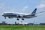 スターアライアンスKMJ まいやんさんが、宮古空港で撮影した全日空 787-8 Dreamlinerの航空フォト(写真)