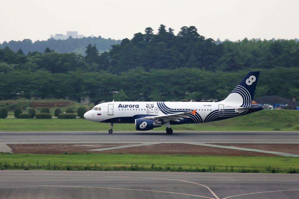 T.Sazenさんのオーロラ Airbus A319 (VQ-BBD) 航空フォト