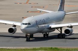 鈴鹿@風さんが、羽田空港で撮影したカタールアミリフライト A340-313Xの航空フォト(飛行機 写真・画像)