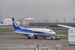 溝川 眞司さんが、羽田空港で撮影した全日空 737-54Kの航空フォト(飛行機 写真・画像)