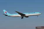 みなかもさんが、成田国際空港で撮影した大韓航空 A330-323Xの航空フォト(写真)