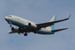 木人さんが、成田国際空港で撮影した大韓航空 737-7B5 BBJの航空フォト(写真)
