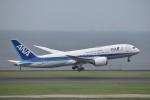 T.Kawaseさんが、羽田空港で撮影した全日空 787-8 Dreamlinerの航空フォト(写真)