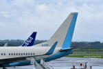 takamaruさんが、静岡空港で撮影した大韓航空 737-7B5 BBJの航空フォト(写真)
