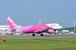 masatakaさんが、鹿児島空港で撮影したピーチ A320-214の航空フォト(写真)
