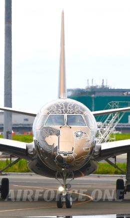 AIRFORCE ONEさんが、羽田空港で撮影したエンブラエル ERJ-190/195の航空フォト(写真)