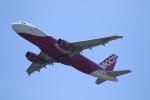 Hiroki.Sさんが、関西国際空港で撮影したピーチ A320-214の航空フォト(写真)