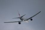 Hiroki.Sさんが、伊丹空港で撮影した日本航空 777-289の航空フォト(写真)