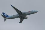 Hiroki.Sさんが、伊丹空港で撮影した全日空 737-881の航空フォト(写真)