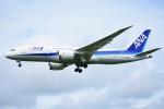 kozikoziさんが、成田国際空港で撮影した全日空 787-8 Dreamlinerの航空フォト(写真)