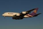 採れたてほしいもさんが、成田国際空港で撮影したタイ国際航空 A380-841の航空フォト(写真)