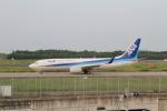 ごうきゅうさんが、成田国際空港で撮影した全日空 737-881の航空フォト(写真)