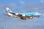SKY☆101さんが、成田国際空港で撮影した全日空 A380-841の航空フォト(写真)