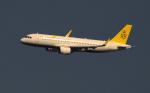 kenko.sさんが、成田国際空港で撮影したロイヤルブルネイ航空 A320-251Nの航空フォト(写真)