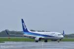 takamaruさんが、静岡空港で撮影した全日空 737-881の航空フォト(飛行機 写真・画像)
