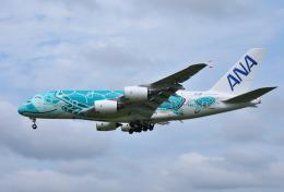 mojioさんが、成田国際空港で撮影した全日空 A380-841の航空フォト(写真)