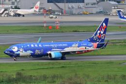 HISAHIさんが、福岡空港で撮影した中国聯合航空 737-8HXの航空フォト(写真)