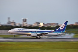 kurubouzuさんが、伊丹空港で撮影した全日空 737-881の航空フォト(写真)