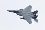 うみBOSEさんが、千歳基地で撮影した航空自衛隊 F-15J Eagleの航空フォト(写真)