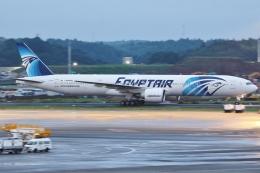 Wings Flapさんが、成田国際空港で撮影したエジプト航空 777-36N/ERの航空フォト(写真)