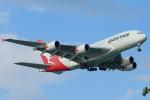 steraziyさんが、シンガポール・チャンギ国際空港で撮影したカンタス航空 A380-842の航空フォト(写真)