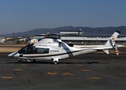 とびたさんが、八尾空港で撮影した日本法人所有 A109E Powerの航空フォト(飛行機 写真・画像)